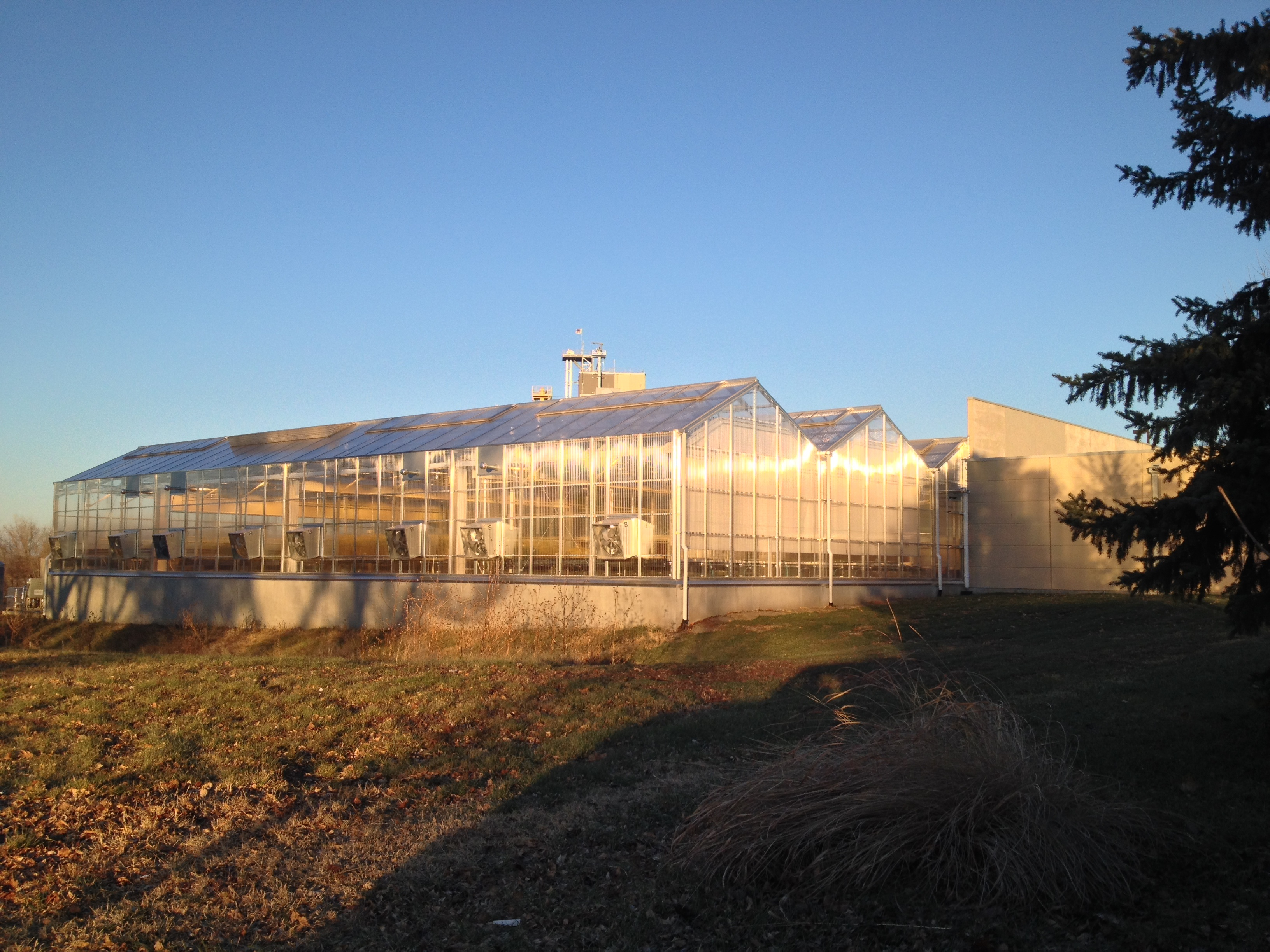 Commercial_Greenhouse.jpg