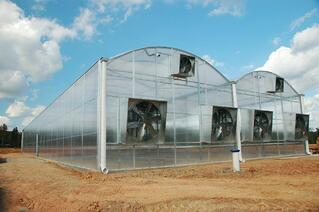 New_Commercial_Greenhouse.jpg